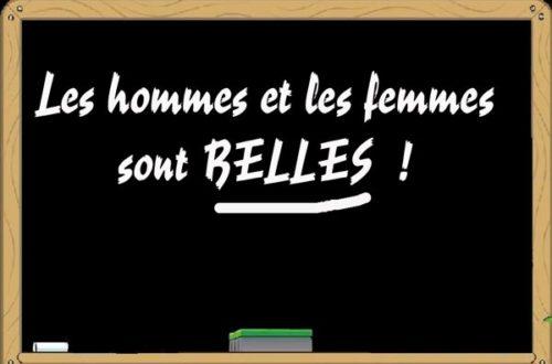 Article : Les sexes des mots, le français à l'épreuve