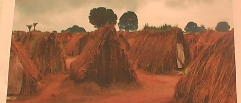Article : L'heure de l'émancipation des pygmées a sonné au Katanga