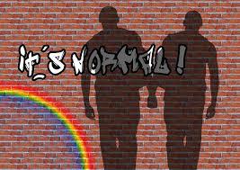 """L'homosexualité """"c'est normal"""""""