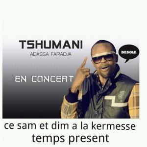 Concert de musique sur Désolé honorable de Tshumani. Source; Tshumani