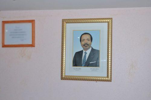 Article : L'étonnant optimisme des camerounais sur Paul Bya